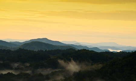 elusive: fog mountain