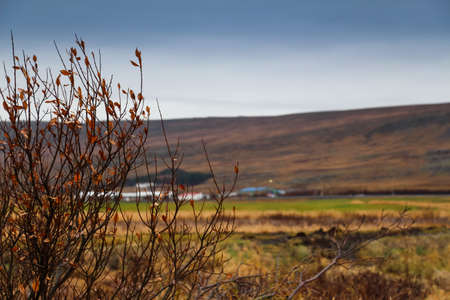 Landscape view of the big mountain and the grass field on the way to Reykholt, autumn Iceland Stock Photo