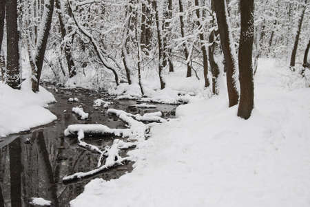 Little river in winter forest Stock Photo