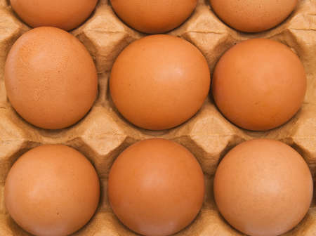 Background from eggs in carton box. Closeup photo