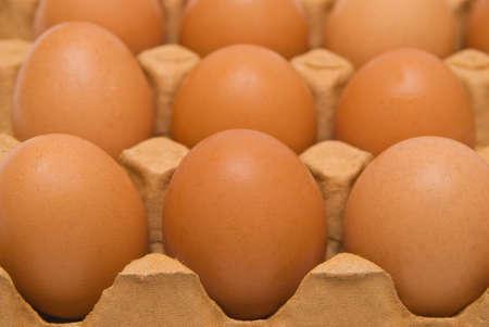 Eggs in carton box. Closeup