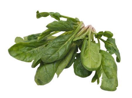 Spinach bunch on white background