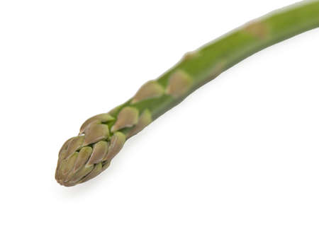 One stem of aspargus on white background