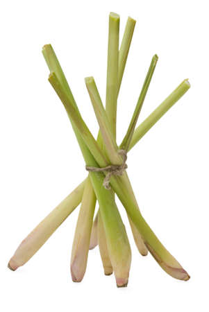 Bunch of lemongrass stand by fan on white background Stock Photo
