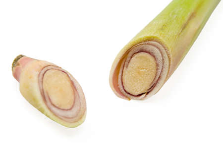 Section of lemongrass on white background
