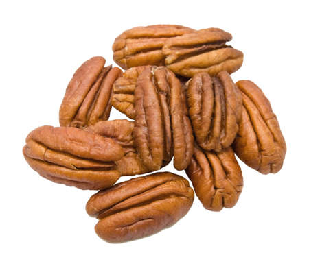 Carya pecan on white background