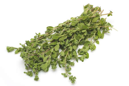 Bunch oh thyme on white background