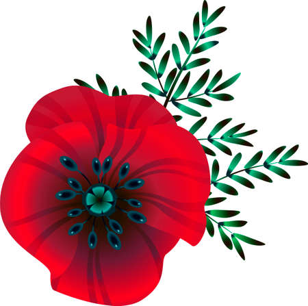 bright red poppy flower, vector illustration, flower and green blue leaves Remembrance day symbol. Lest we forget lettering.