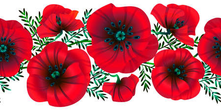 Horizontal seamless background  flowers bright red poppies, leaves and buds, vector illustration,