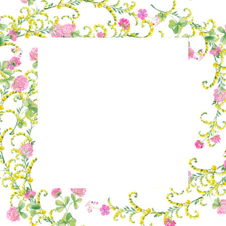 frame watercolor flowers of pink clover and yellow vetch. Hand drawing for cards, invitations, decor