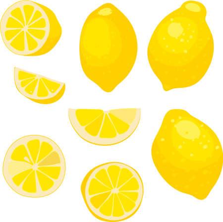 lemon, whole fruit, whole and slices of lemon, vector illustration. lemon fruit illustration for decorative poster, emblem natural product, farmers market