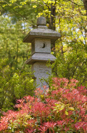 Japanese granite latern in forest setting