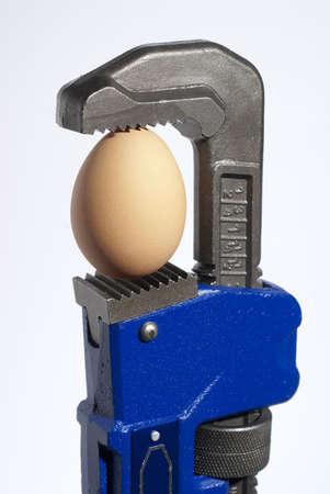 配管工のレンチの顎にデリケートな卵を絞る