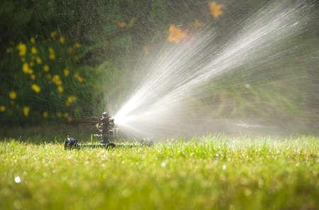 Lawn sprinkler spraying water over green grass in summer