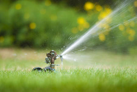 sprinkler: Lawn sprinkler spraying water over green grass in summer