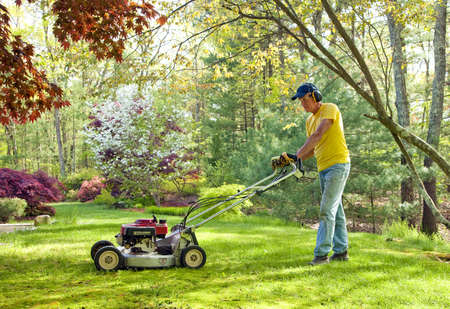 lawn mowing: Mowing lawn