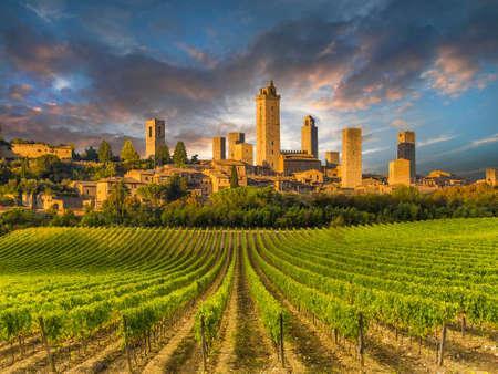 Vineyards of San Gimignano, Tuscany, Italy Banco de Imagens - 35645513