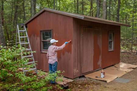 back yard: Middle aged woman painting a shed in her back yard Stock Photo