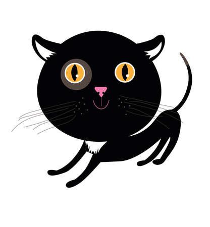 Little black kitten on a white background