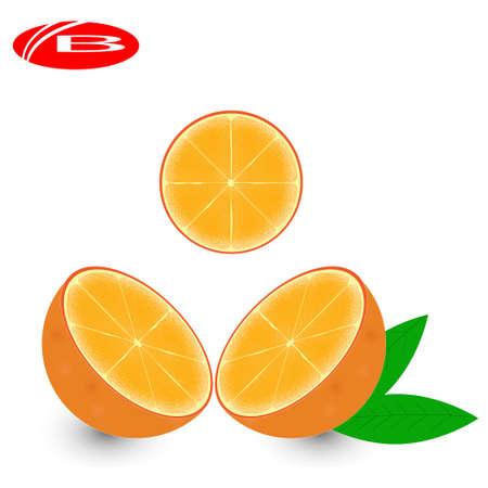 Orange fruit with leaf and slice. Vector illustration