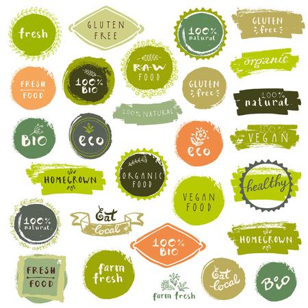 Bio-Lebensmittel-Etiketten. Vector frische gesunde Lebensmittel-Symbole. Vintage-Abzeichen für Restaurant-Menü oder Lebensmittelverpackung Standard-Bild - 64874224