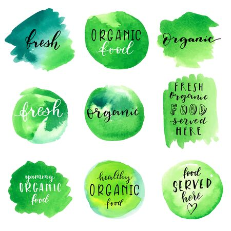 Fresh organic food labels on green watercolor backgrounds. Modern calligraphy, hand lettering. Handmade artistic product. EPS10 vector illustration