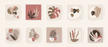 Abstract natural botanical wall art posters. Fluid organic foliage shapes in neutral colors. Minimal floral prints. Mid Century Modern design wall art. Artistic retro plant tropical illustration Stock Illustratie
