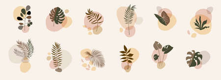 Abstract floral compositions. Boho story templates. Fluid organic shapes, neutral colors. Bohemian exotic leaf prints. Mid Century Modern design. Artistic leaves illustration