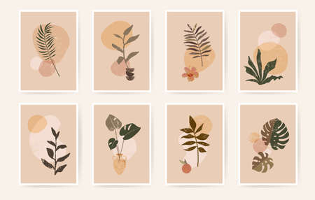 Boho aesthetic abstract botanical wall art poster prints. Scandinavian design, neutral natural colors. Bohemian collage wall prints. Mid Century Modern design. Plant fruit posters vintage illustration