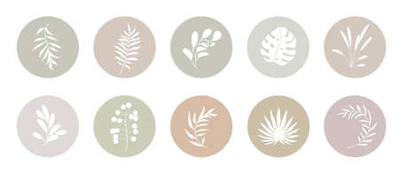 Abstract organic story highlight cover templates isolated on white background. Botanical illustration in pale neutral earthy colors. Delicate hipster design elements set