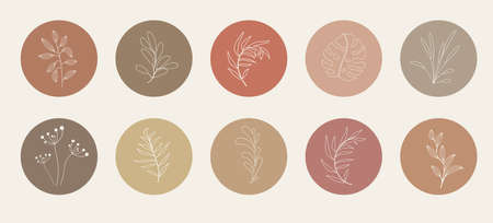 Abstract organic story highlight cover templates isolated on white background. Botanical illustration in neutral earth tone colors. Hipster design elements set Ilustracja
