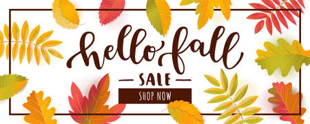 Hello Fall Sale horizontal promotion banner. Bright warm colors design with a frame. Scattered flat colorful realistic autumn leaves with shadows isolated on white background
