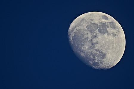 macrophoto: macrophoto of moon on a blue background
