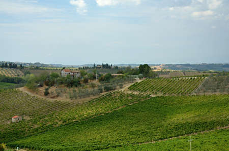 coutryside: views of the coutryside Tuscany, Italy Stock Photo