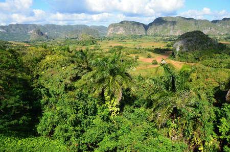Mogotes en Valle de Viales Cuba El Valle de Viñales en Cuba El Valle de Viñales en Cuba un famoso destino turístico y una zona de gran crecimiento del tabaco