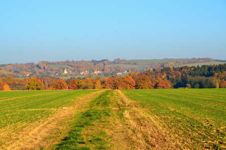 karlovy: Colorful Autumn landscape in Czech Republic with path between field  2015