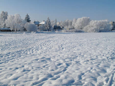 covered fields: Landscape and  Trees covered with snow in winter Stock Photo