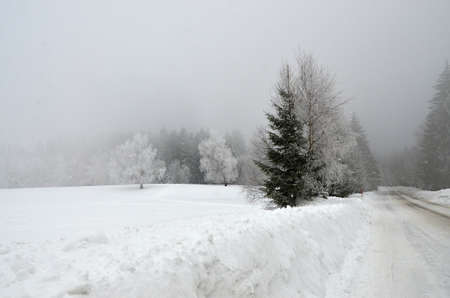 Winter natur in Klinovec Karlovy Vary region 版權商用圖片