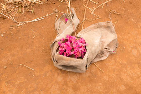 gunny: Dry yellow African ground with bunch of purple flowers inside Gunny sack Stock Photo