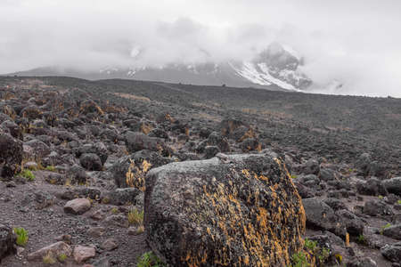 backcountry: Kilimanjaro top view with snows.  Gray lava f elds, desolate back-country with stones and rocks Stock Photo