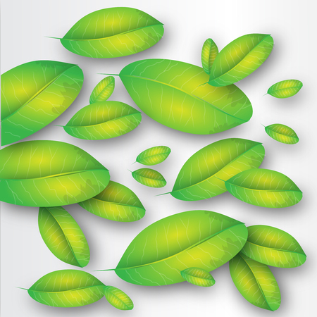 This illustration represents some green leaves as background.