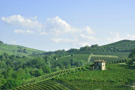 This photo represents a Barolo panorama Imagens