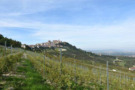 La Morra panorama of vineyards, Langhe, Piedmont, Italy Imagens