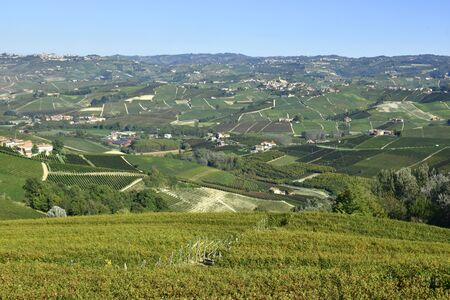 Langhe vineyards panorama; Langhe are famous for Italian wine production, in Piedmont. Imagens - 136380130