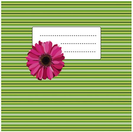 gerbera: pink gerbera on the green and yellow background Illustration