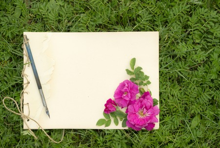 drawing pad: handmade drawing pad with flowers and leaves of wild rose and old pen on the background of grass Stock Photo
