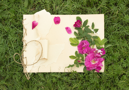 drawing pad: handmade drawing pad with flowers and leaves of wild rose on the background of grass