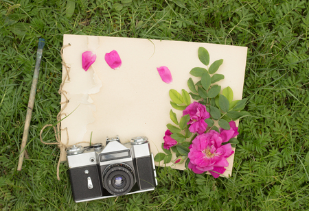 drawing pad: handmade drawing pad with flowers and leaves of wild rose, old brush and camera on the background of grass