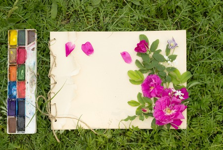 drawing pad: handmade drawing pad with flowers and leaves of wild rose, watercolor paints and brush on the background of grass Stock Photo