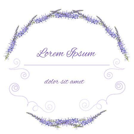 natural beauty: Vector purple floral frame. Flower illustration. Illustration
